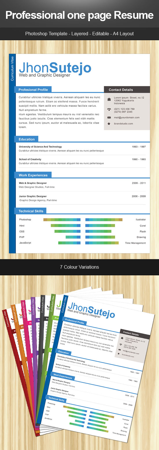 free resume template professional one page resume. Black Bedroom Furniture Sets. Home Design Ideas