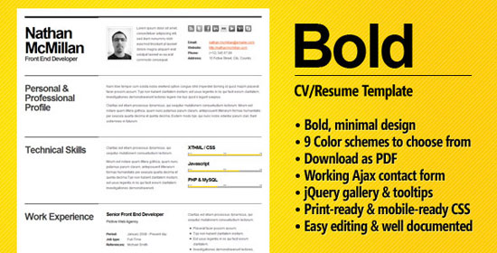 combinational resume template