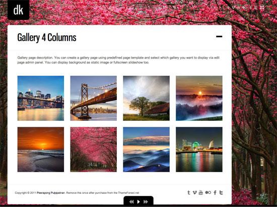 portofolio website templates