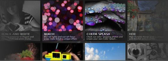 Tips Photography Website Template