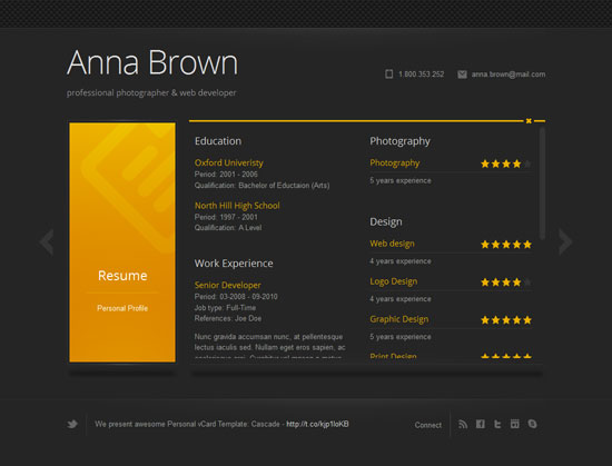 Professional Wordpress Themes For Your Online Resume