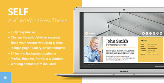 10 Professional Wordpress Themes For Your Online Resume