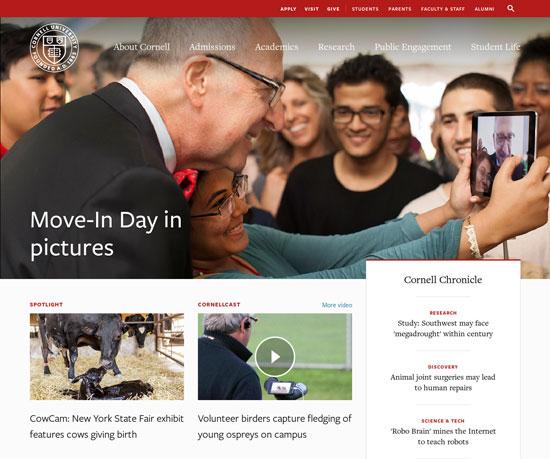Best University Website Designs