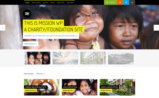 11 Effectively Designed Charity Website Templates