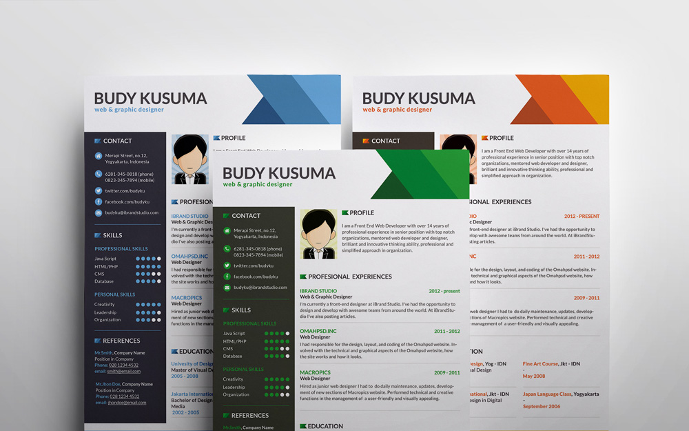 free resume template flasher 3 colors psd