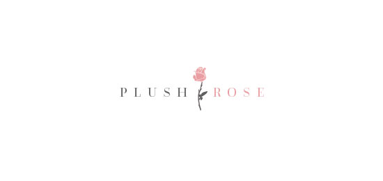 Plush Rose by Rachel