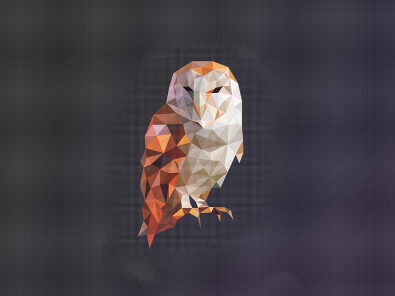 Poly Owl Logo by Breno Bitencourt