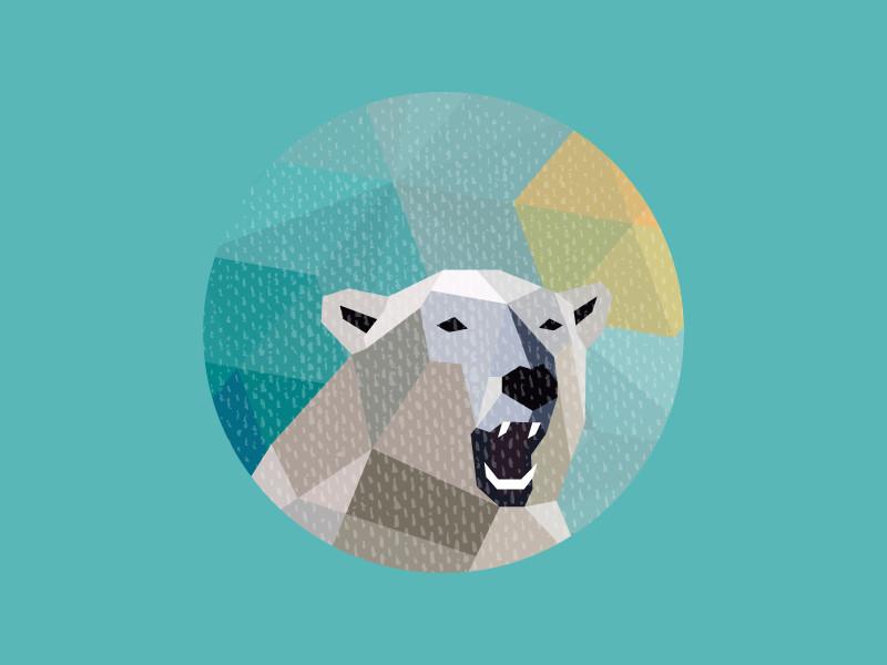 Polar Bear by Kemal Sanli