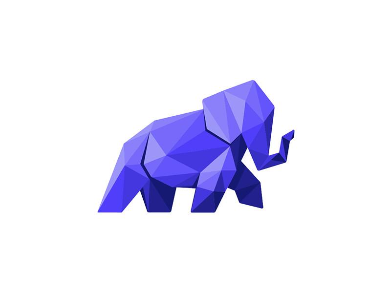 Elephant by Amanda Donovan