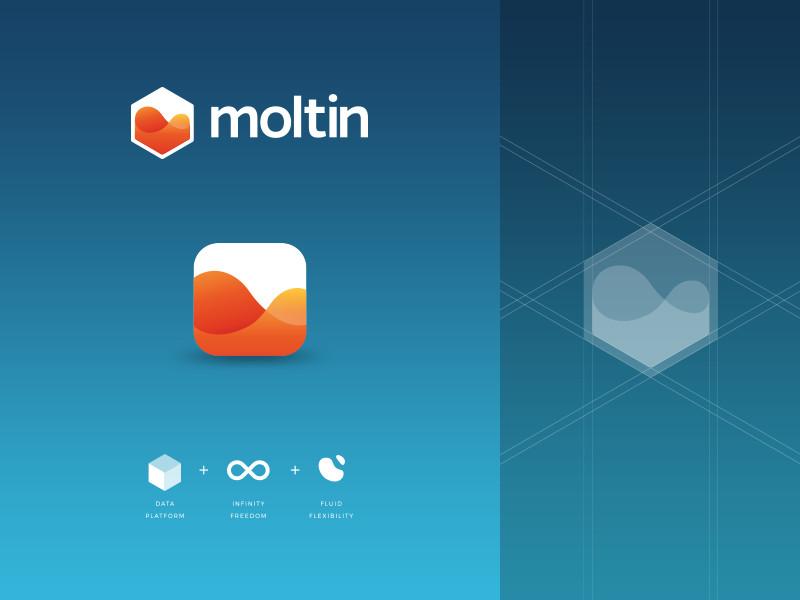 moltin logo by Damian Kidd