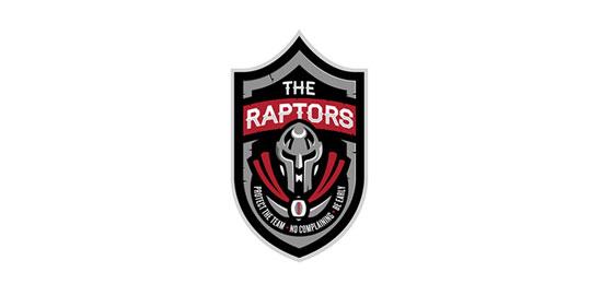 Falcons Internal Team Identity logo