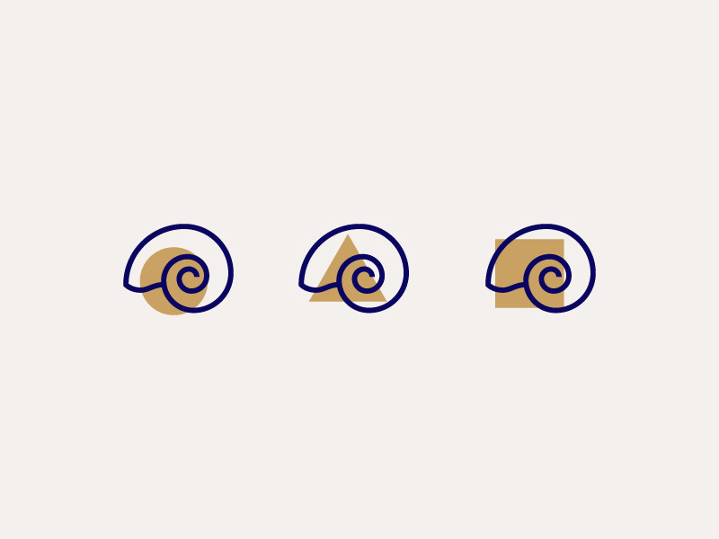 Nautilidae by Sandro Laliashvili