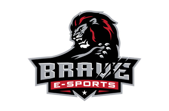 BRAVE eSPORTS by Slavo Kiss