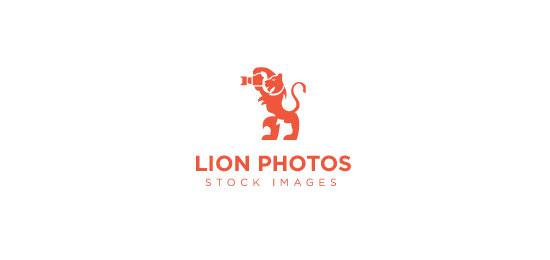 Fotos de leones por senangh