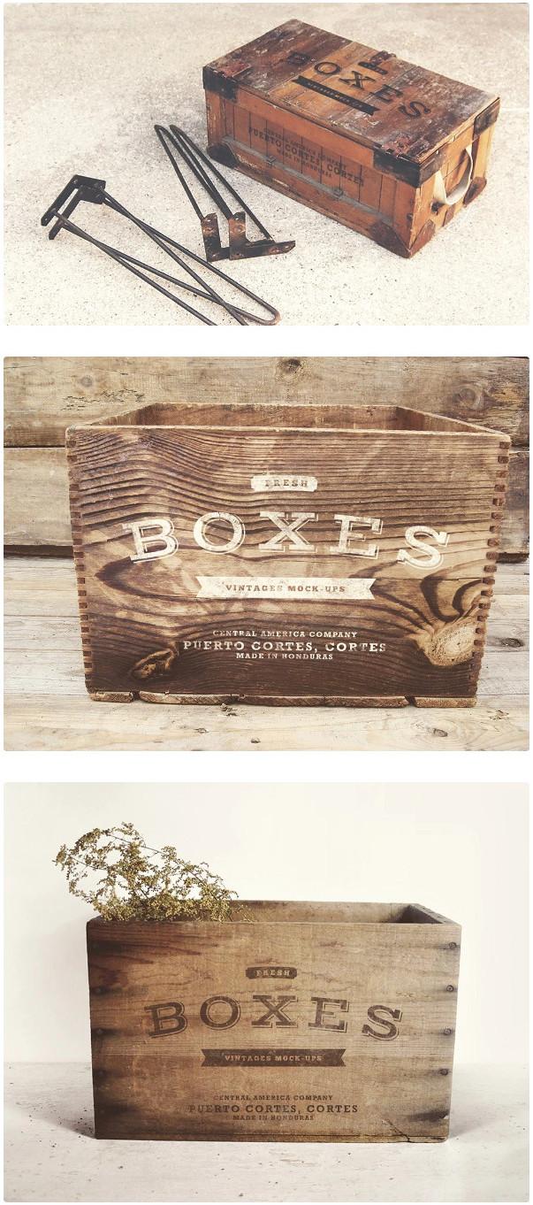 Vintage Boxes Logo Mockup by EAMEJIA STORE