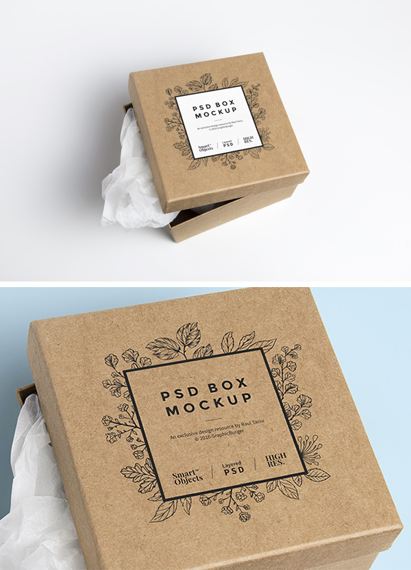 Cardboard Box PSD MockUp by GraphicBurger