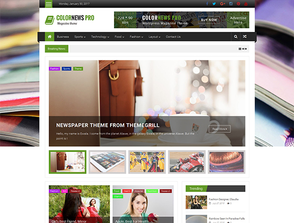 ColorNews Pro - Magazine WordPress Theme