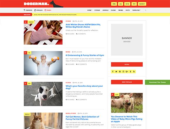 Doberman - Magazine WordPress Theme