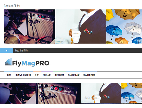 FlyMag Pro - Magazine WordPress Theme