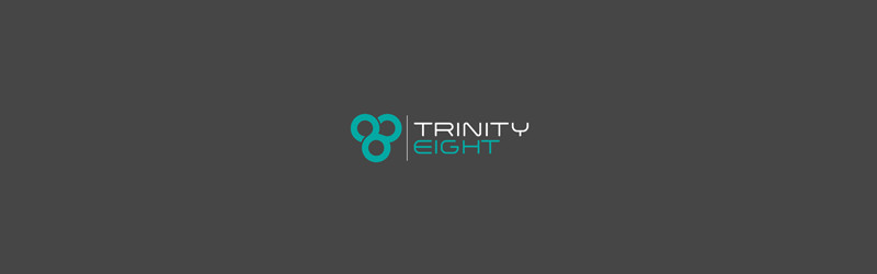 Trinity Eight - Security Logos