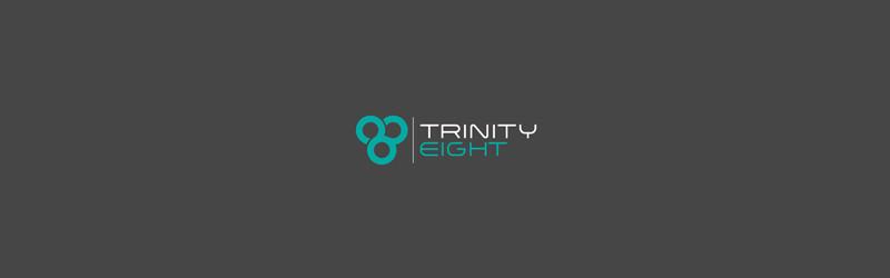 Trinity Eight - Security Logos
