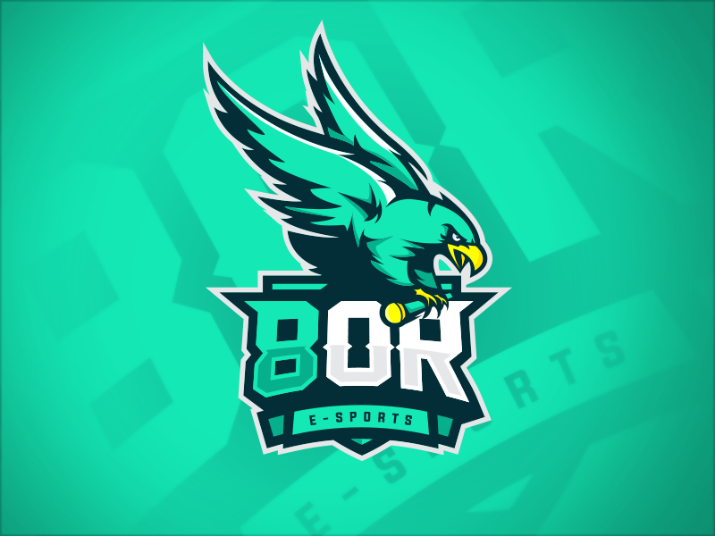 8OR eSport Team Logo Design