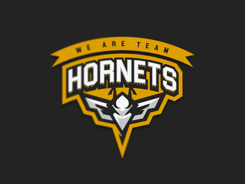 Team Hornets eSport Team Logo Design