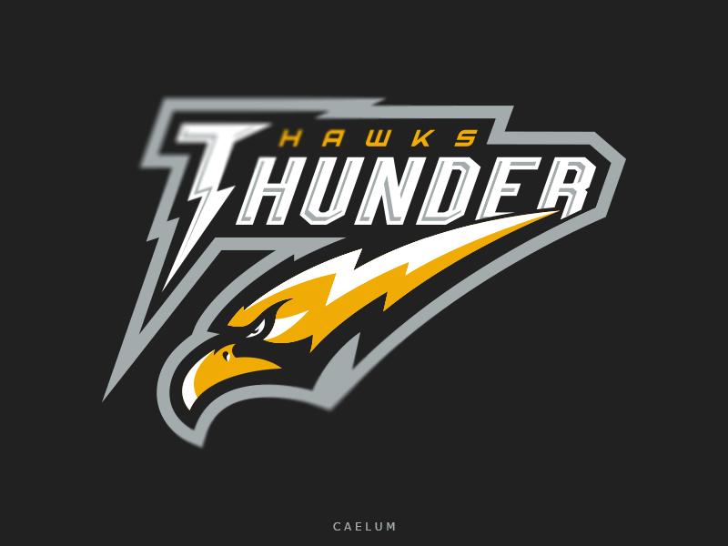 Logotipos de Equipos de eSports y gamers - Diseño de logotipo del equipo Thunder Hawks eSport