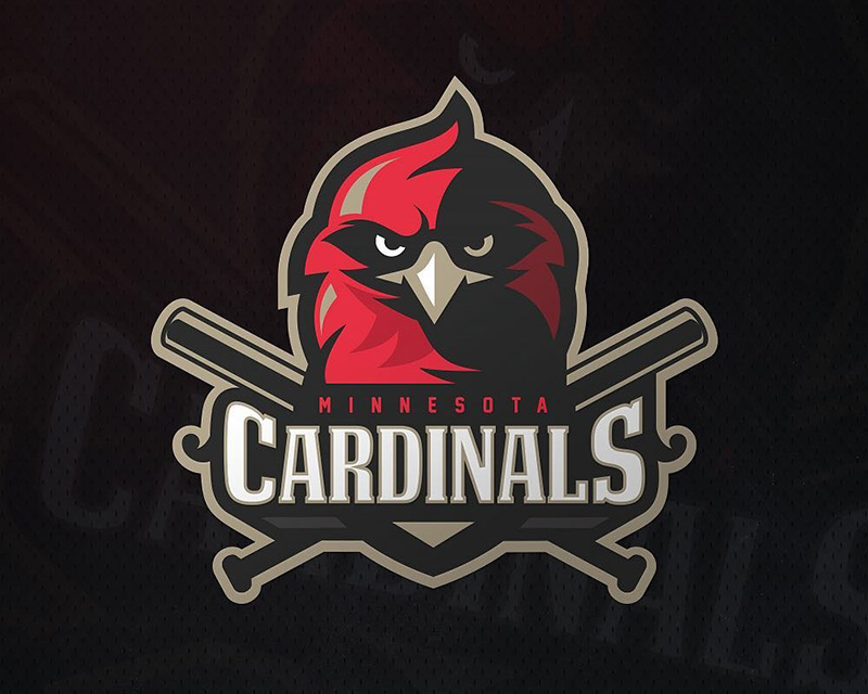 Minnesota Cardinals by zerographics